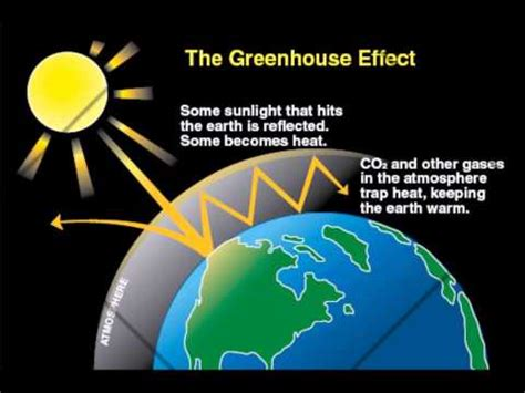 Global Warming and the Greenhouse Effect - Essay