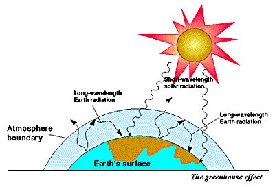 Global warming and greenhouse effect essay